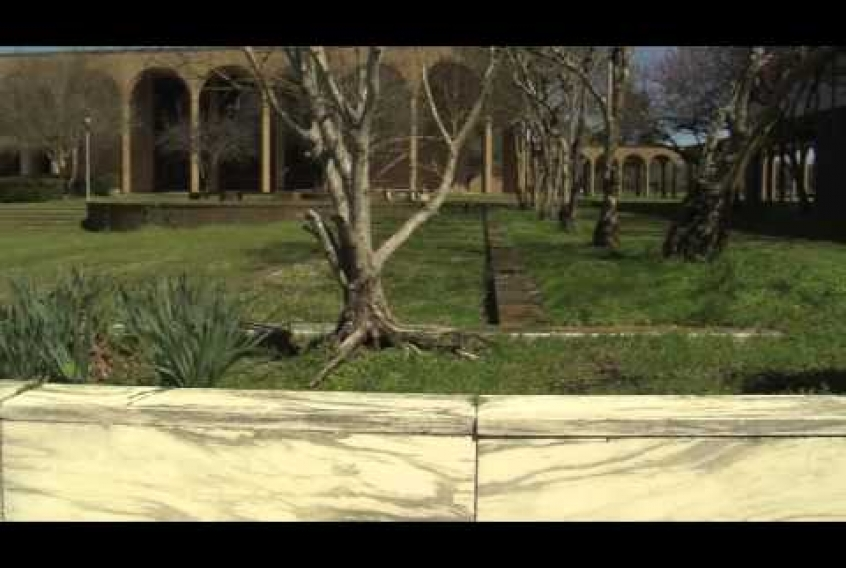 Embedded thumbnail for Campus Cleanup